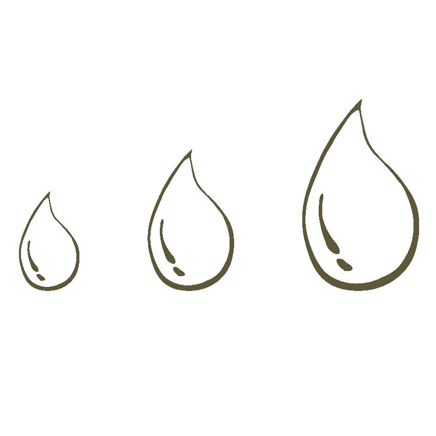 Esigenza Acqua - Necessità di Innaffiatura sporadica