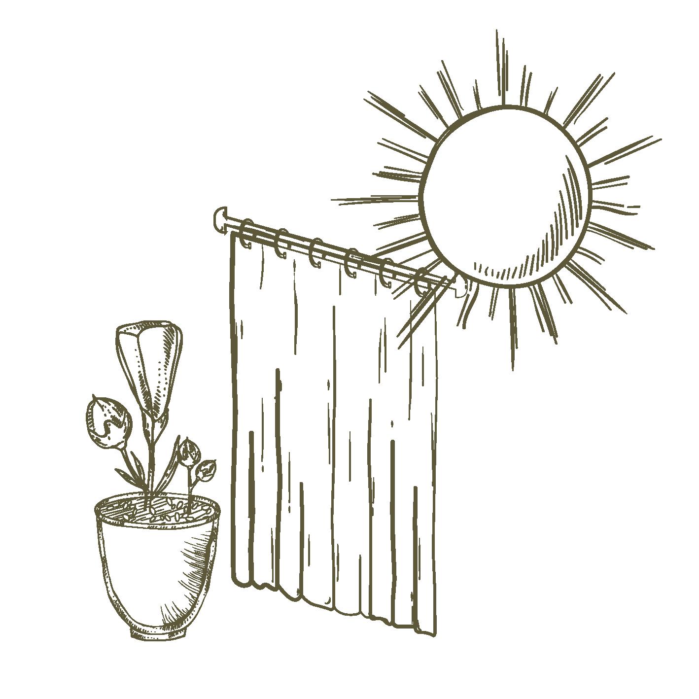 Esposizione - Sole Filtrato